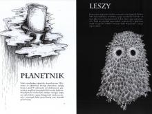 ilustracja_rozkładówka_AlicjaKochańska