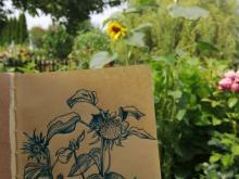 Daria Politova szkice z podróży 3